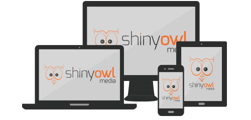 Shiny Owl Media